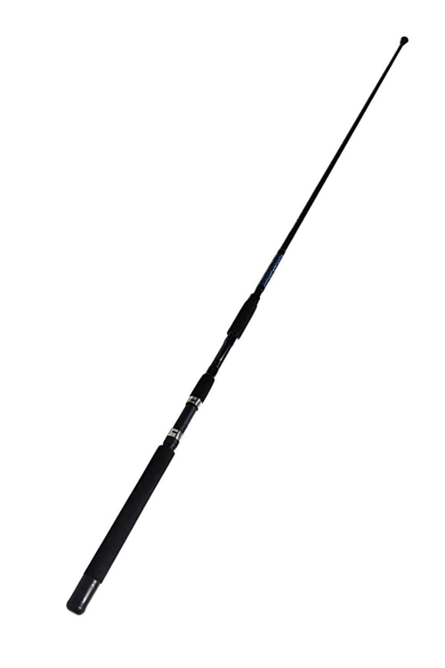 Top 5 Best Saltwater Fishing Rods 2019 - 2020 [BUYER'S GUIDE]